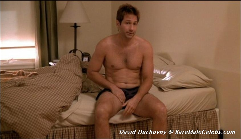 Nude photo of david duchovny remarkable