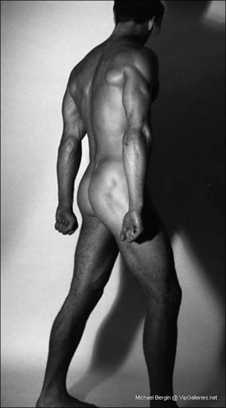 Denise austin nude fakes