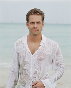 Paul Walker Hq Picture Sample 2