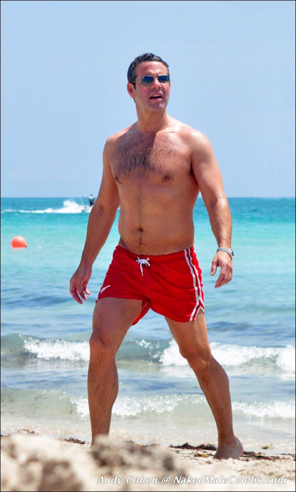Andy cohen is gay