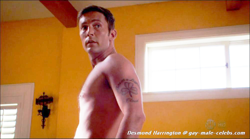 DESMOND HARRINGTON GAY