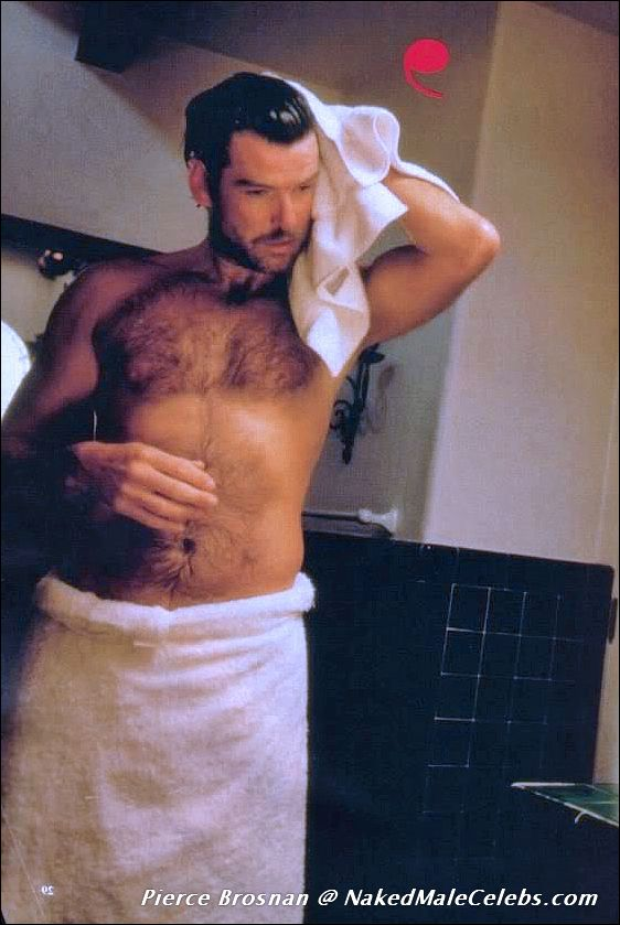 Pierce brosnan nude question