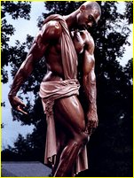 Terrell owens nude congratulate